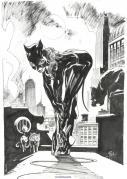 Catwoman par Roland Boschi