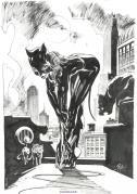 Catwoman par Boschi
